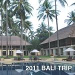 2011 BALI TRIP