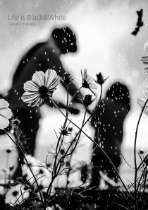Life is Black&White