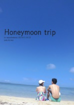Honeymoon trip