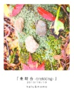 『 乗 鞍 岳 -trekking- 』