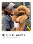 EPI エピ4歳 おめでとう!