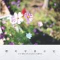 櫻的写真日記