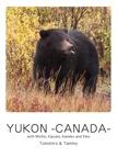 YUKON -CANADA-