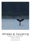 Whales & Kayaking