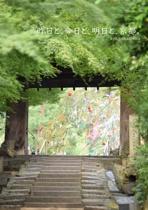 昨日と、今日と、明日と、京都。