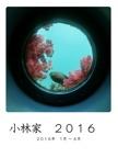 小林家 2016