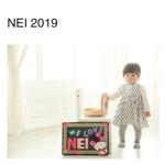 NEI 2019