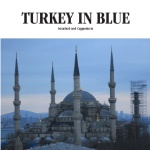 TURKEY IN BLUE