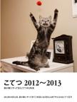 こてつ 2012~2013