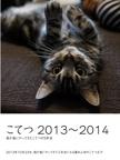 こてつ 2013~2014