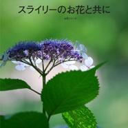 スライリーのお花と共に
