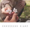Dresscode Diary