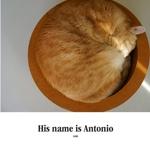 His name is Antonio