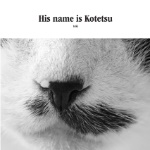His name is Kotetsu