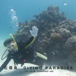 石垣島 DIVING PARADISE