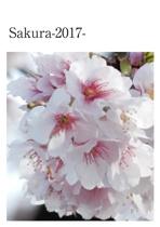 Sakura-2017-