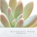 Succulent Note