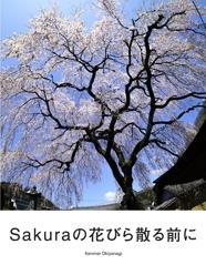Sakuraの花びら散る前に