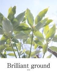 Brilliant ground