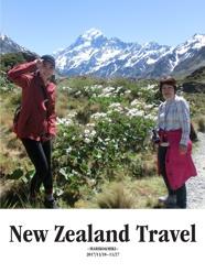 New Zealand Travel