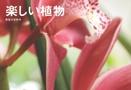 楽しい植物