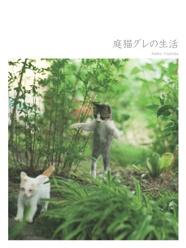 庭猫グレの生活
