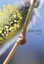 猫柳の季節