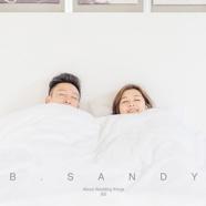 B.SANDY