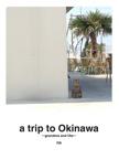 a trip to Okinawa