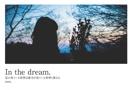 In the dream.