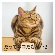 だってネコだもん・・2