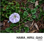 HAMA_HIRU_GAO