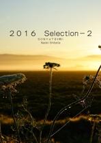 2016 Selection-2