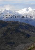 2013 selection