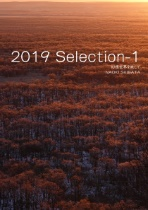 2019 Selection-1