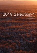 2019 Selection-1