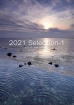 2021 Selection-1