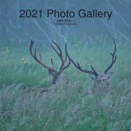 2021 Photo Gallery