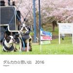ダルカカ☆思い出 2016
