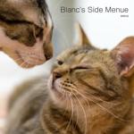 Blanc's Side Menue
