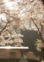 春・夏・秋・冬
