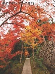 季節の彩り(コニーに捧ぐ)