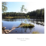 Finland & Tallinn
