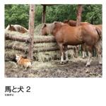 馬と犬 2