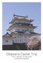 Odawara Castel Trip