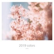 2019 colors