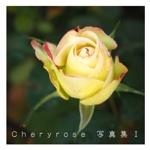 Cheryrose 写真集Ⅰ