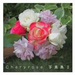 Cheryrose 写真集Ⅱ