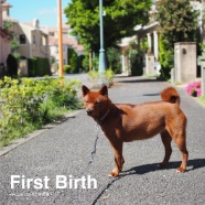First Birth