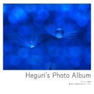 Heguri's Photo Album